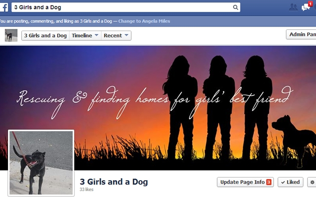Facebook - 3 Girls and a Dog